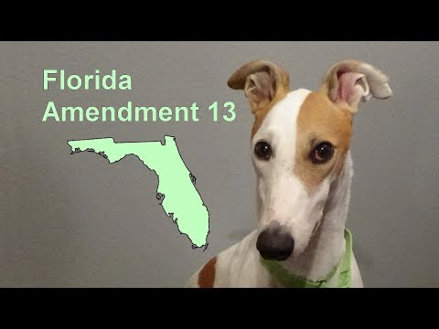 Florida Amendment 13 [3.1]