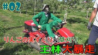 #2『RINGOMUSUMEの産地直送 日本最高!!』実すぐり&草刈りそして王林大暴走