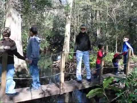 Jacksonville arboretum and gardens youtube - Jacksonville arboretum and gardens ...