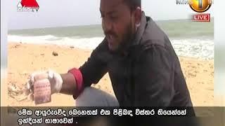 News 1st: Prime Time Sinhala News - 7 PM | (14-08-2018) Thumbnail