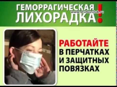 Геморрагическая лихорадка с почечным синдромом (ГЛПС