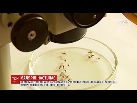 В Україні реєструють все більше випадків так званої 'завезеної' малярії