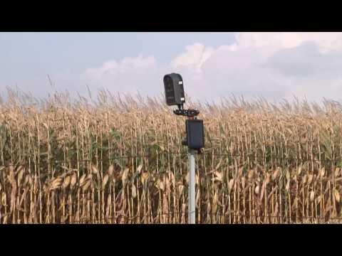 New Discovery Farm Site in SW Minnesota