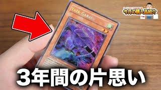 【遊戯王】カードショップ社長の今月の購入品紹介【12月編】