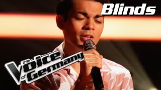 Passenger - Let Her Go (Leo Engels) | The Voice of Germany | Blind Audition