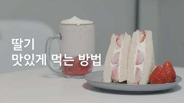 Sub) 제철 딸기 잘 고르는 방법&보관법 (한글자막) / How to eat strawberries deliciously