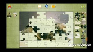 Cute Dogs And Puppies Jigsaw Puzzle Video For Kids Apps Gameplay