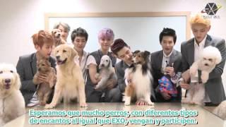 [EXOPLANETSPAIN SUB ESP] 17.08.13 EXO | Super Dog