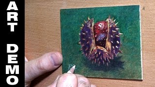 Miniature Coloured pencil Drawing of A Conker Demo