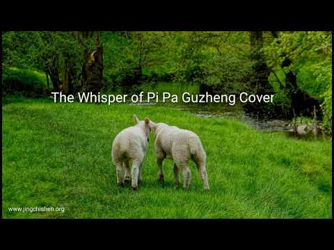 The Whisper of Pi Pa Guzheng Cover