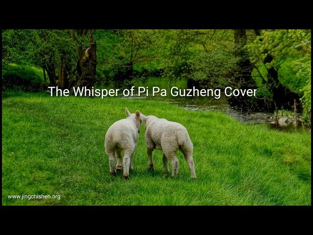 The Whisper of Pi Pa Guzheng Cover