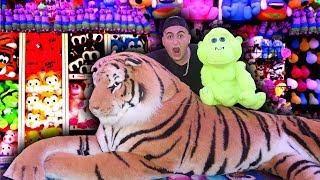 I Won Every Prize At A Theme Park *MrBeast CHALLENGE*