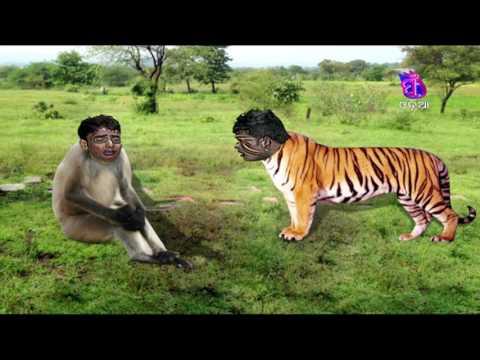 Golmaal    Mankada O Bagha Katha    Funny Videos #Odia Comedy Web Series