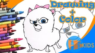 How To Draw Gidget - Secret Life of Pets - Easy - Drawing Tutorial (Art & Drawing For Kids)