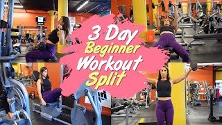 Beginner 3 Day Workout Split