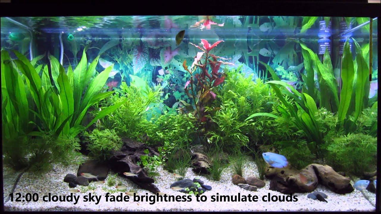 Diy Daylight Simulation In A Led Fish Tank Led Aquarium Tageslichtsimulation Discontinued Youtube