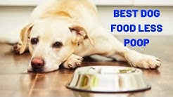 Best Dog Food Less Poop | What Healthy Dog Poop Should Look Like