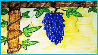 How to draw grapes // bunch of grapes // grapes with grape vine step by step