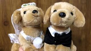 http://www.tedukuri-wedding.com/mall/bear/otegoro_animal/dog/golden...