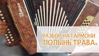 """Разбор песни на гармони """"Полынь трава"""" - Иван Разумов"""