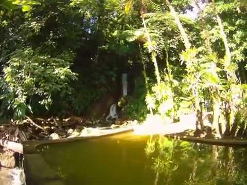 Papillote Wilderness Retreat   empty spa