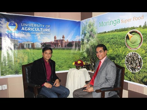 "Interview Dr Shahzad Basra ""Miracle Tree Moringa Oleifera"" Pakistan"