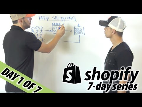 1/7 ZERO TO $100K  SHOPIFY DROPSHIPPING FOR BEGINNERS  Chris Record Vlogs 101