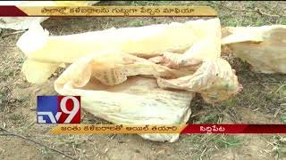 Oil made of animal fat and rotten meat- TV9