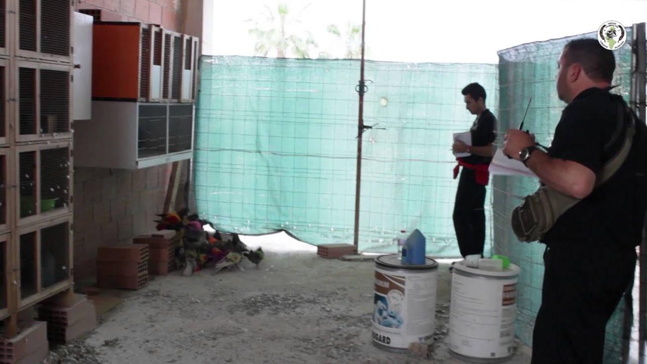 xxxi campeonato de colombicultura de la cv - jacarilla  6 u00aa prueba