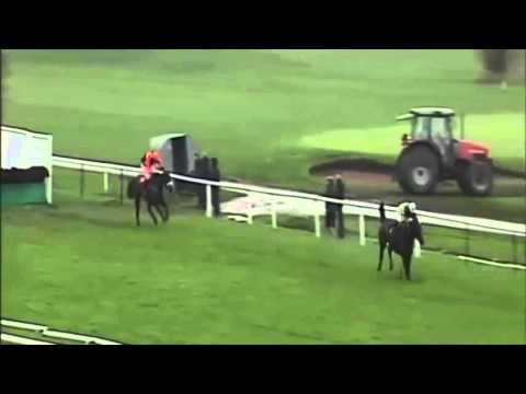Horse loses the unloseable