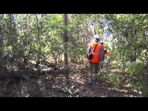 Eye On Luminant - Unearthing The Kimik Kiln At Kosse Mine