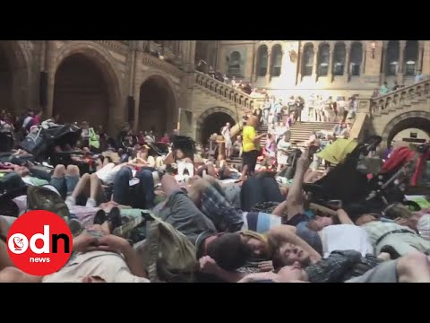 Climate activists stage 'die-in' protest at London's Natural History Museum