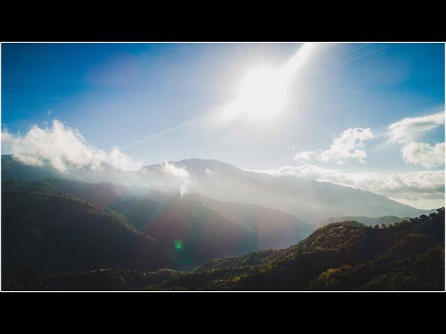 Morning Walk | Tower Hill | Travel
