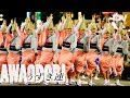 阿波踊りの「うずき連」 表情豊かにキレよく Uzuki-ren: Expressive Dancers