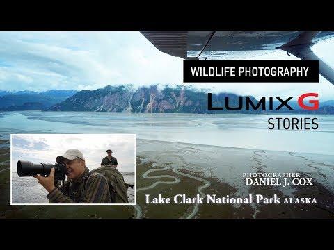 Wildlife Photography in 4K   Daniel J. Cox, Alaska   LUMIX G Stories
