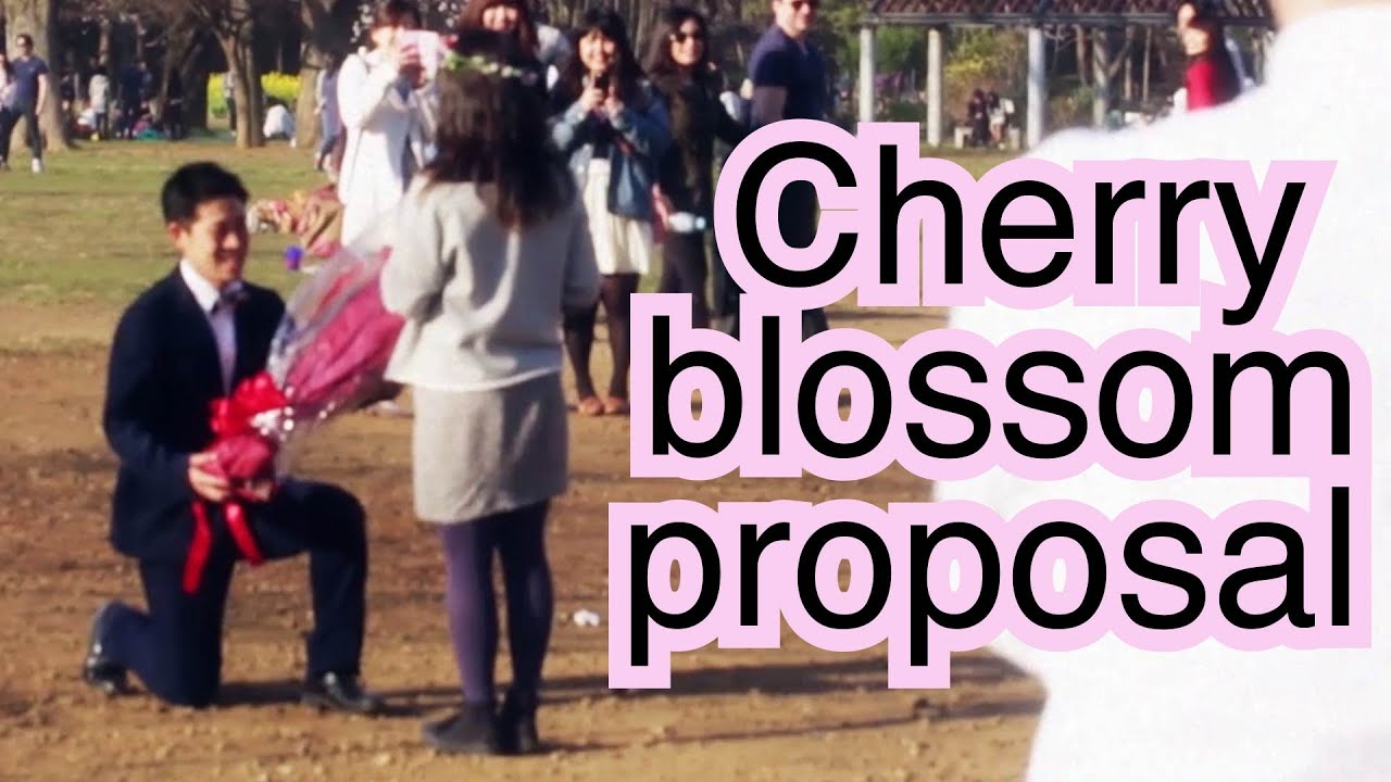 30c986c1627451 Adorable Japanese Surprise Proposal \(`0´)/ - YouTube
