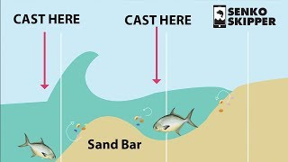 Surf Fishing 101: HOW TO CATCH FISH