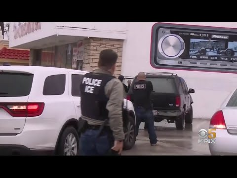 Bay Area Responds to ICE Raids With Fear and Defiance