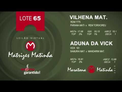 LOTE 65 Matrizes Matinha 2019