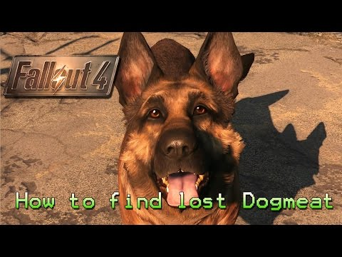 Fallout 4 | How to find lost Dogmeat