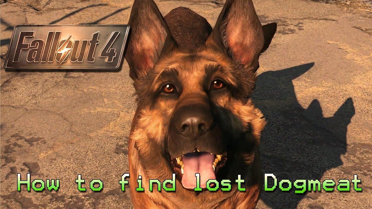 Fallout 4 потерялся пес