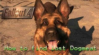 Fallout 4 How to find lost Dogmeat