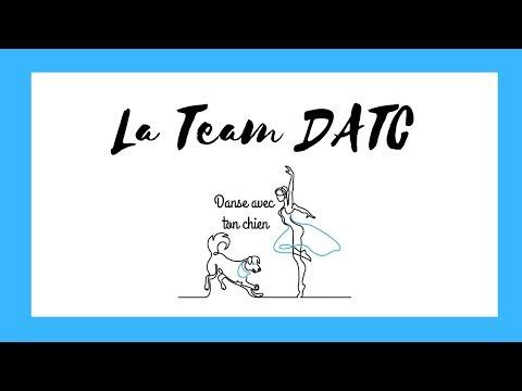 La Team Danse avec ton chien 2019-2020 #dogdancing #POUCESDOR2019