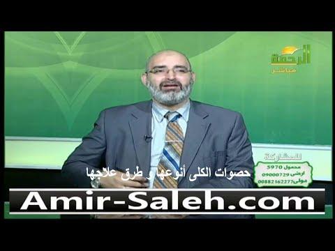 حصوات الكلى أنوعها و طرق علاجها | الدكتور أمير صالح