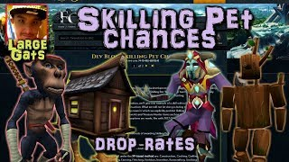 Skilling pet chances - Drop rates revealed!