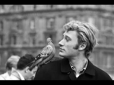 Johnny Hallyday 1966 dieulois