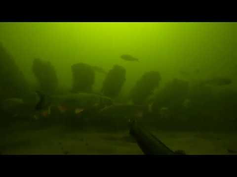 Обнаружил еще один затопленный корабль