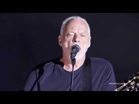 David Gilmour,  Wish You Were Here