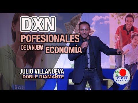Los profesionales de la nueva economía - Julio Villanueva