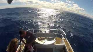 Fishing Waihau Bay